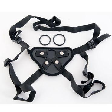 ToyFa �����-Harness, 3 ��������� ������ � ���������