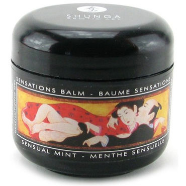 Shunga Sensations Balm, 60мл Мужской бальзам, снижающий ощущения, ментол