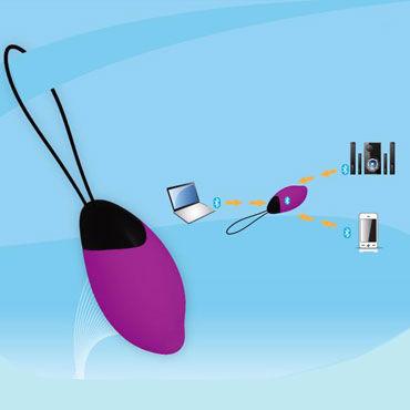 Odeco Aine, розовый Виброяйцо с Bluetooth