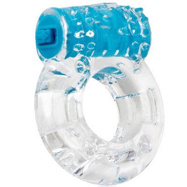 Screaming O Color Pop Plus, голубой Классическое кольцо с вибрацией