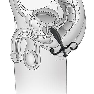 BlueLine Prostate Gear, черный Массажер простаты