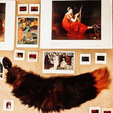Wild Lust анальная пробка, 40 мм Черная, с оранжевым лисьим хвостом