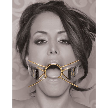 Pipedream Deluxe Spider Gag, золотой Расширитель для рта