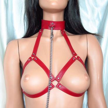 BDSM Арсенал сбруя для груди с ошейником и кольцом, красная На регулируемом ремешке, размер 42-46
