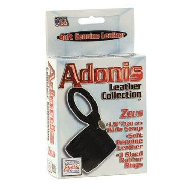 California Exotic Adonis Leather Collection Сбруя на пенис с петлей для мошонки и три эрекционных кольца