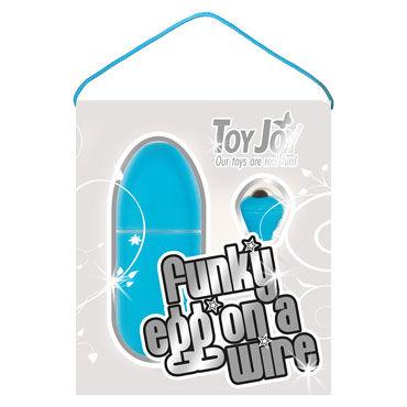 Toy Joy Funky Egg On A Wire, голубое Водонепроницаемое виброяйцо