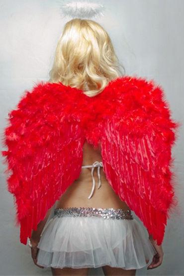 Le Frivole крылья, красные Средние, 60х50 см