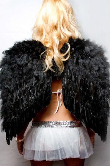 Le Frivole крылья, черные Средние, 60х50 см