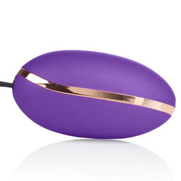 California Exotic Entince Ella, фиолетовый Стильное виброяйцо с пультом управления