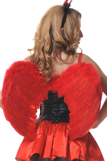 Le Frivole крылья, красные Закругленные, 60х50 см