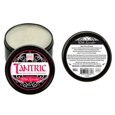 California Exotic Tantric White Lavender, 160 гр Массажная свеча с феромонами, с ароматом белой лаванды
