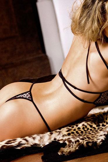 Baci тедди, леопардовое С изысканным кружевом