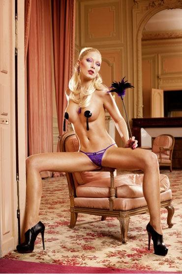 Baci трусики, фиолетовые Из тончайшего кружева
