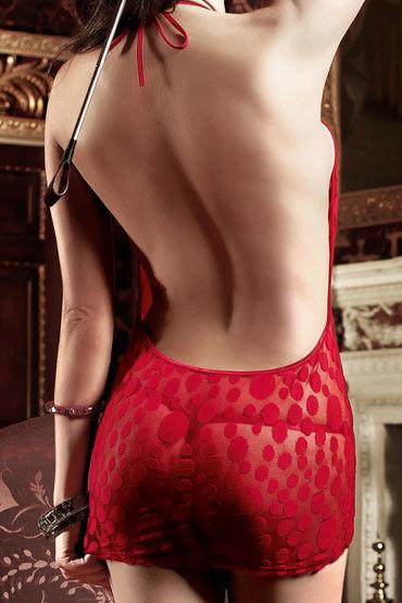 Baci мини-платье, бордовое С завязками за шее