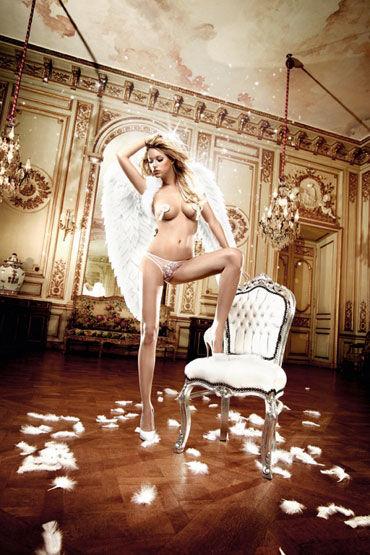 Baci трусики, розовые, Из тюлевой ткани на попке - Размер M-L от condom-shop.ru