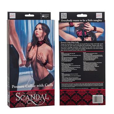 California Exotic Scandal Posture Collar with Cuffs Ошейник с манжетами