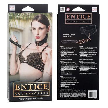 California Exotic Entice Posture Collar with Leash Ошейник с поводком
