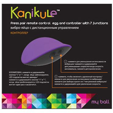 Kanikule виброяйцо, фиолетово-черное С пресс-включением
