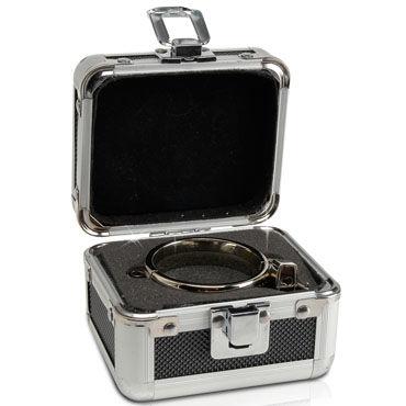 Pipedream Metal Large Cockring Эрекционное кольцо с замочком