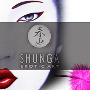 Shunga Body Painting, 100 мл Съедобная краска для тела, клубника и шампанское