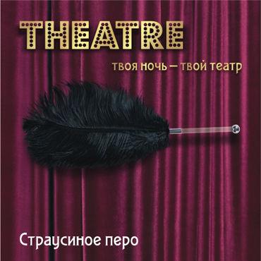 ToyFa Theatre Страусиное перо, черное С рукояткой toyfa theatre страусиное перо красное с рукояткой