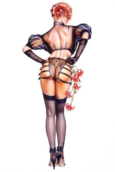 Shirley комплект ''Прикоснись, подразни'' Сексапильное полупрозрачное белье fever fishnet hold ups с кружевной резинкой черные чулки в сетку