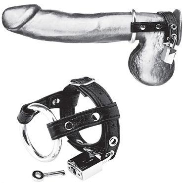 Blue Line Duo Cock and Ball Lock, черно-серебристое Металлическое кольцо с креплением за мошонку сша миллс meimier pink lady сексуальная сорочка с ремешком