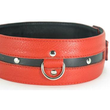 BDSM Арсенал Ошейник с пряжкой, красно-черный С кольцами для карабинов bdsm арсенал ошейник широкий с продольным кольцом красный с тремя кольцами для карабинов