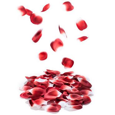 Bijoux Indiscrets Rose Petal Explosion, красные Лепестки роз ароматизированные