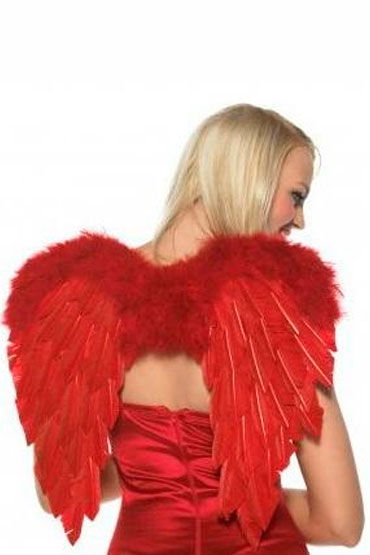 Leg Avenue набор Купидона Лук со стрелой и крылья у lux lab медицинский молоточек