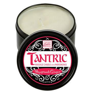 California Exotic Tantric Pomegranate Ginger Массажная свеча с феромонами, имбирь и гранат косметика и аксессуары аромат – имбирь чтобы