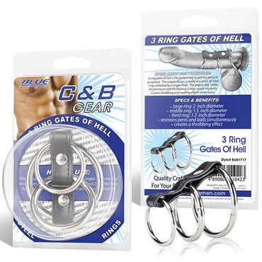 Blue Line Ring Gates Of Hell Хомут из трех колец разного диаметра blue line 5 ring rubber gates of hell with lead черный хомут с 5 резиновыми кольцами
