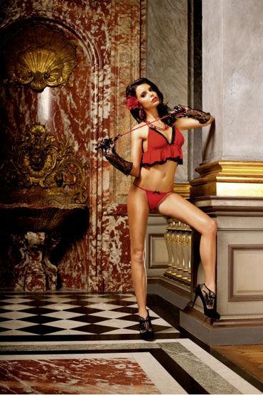 Baci комплект, красный Топ с миниатюрными трусиками о кэтсьюты и чулки на тело baci lingerie