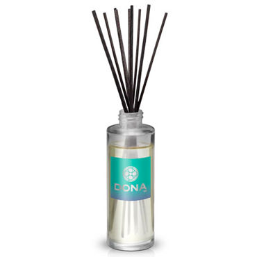 Dona Reed Diffusers Naughty Aroma Sinful Spring, 60 мл Ароматизатор воздуха с ароматом Шалость