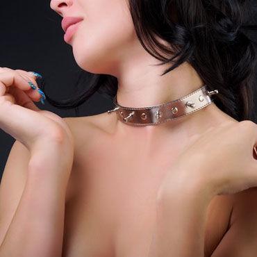 Sitabella Ошейник золотистый С металлическими клепками erotic fantasy пояс верности красный с насадками в комплекте